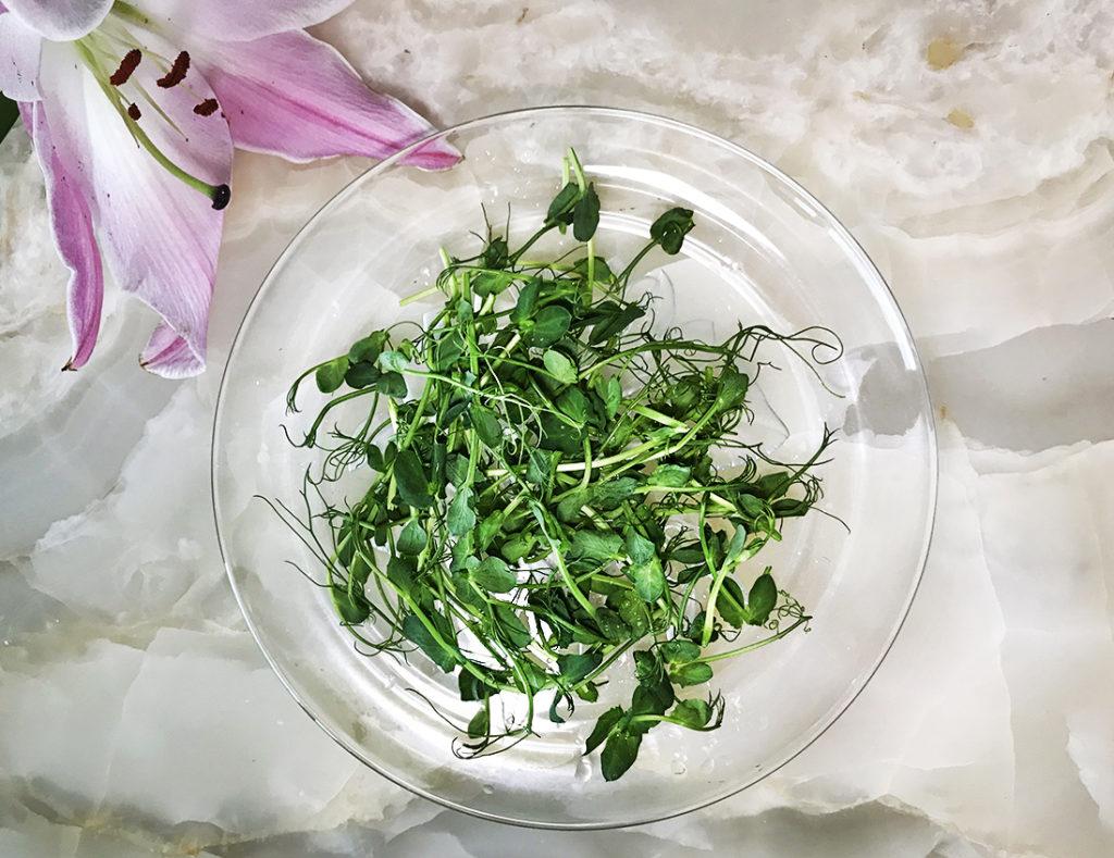 Микрозелень: высокая кухня или доступный суперфуд?
